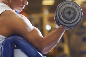 Quelques conseils pour gagner en muscle